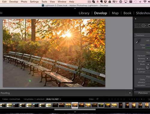 How To Powerfully Recover The Shadows In Lightroom