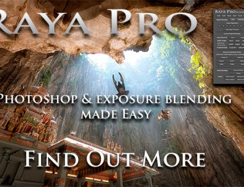 Raya Pro – Your Action Files and Instruction Manual