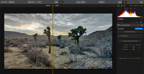 Color Grading and LUTs Explained - Shutter   Evolve