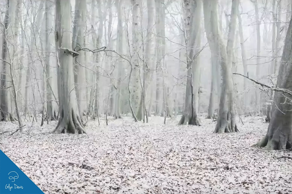 creating a winter scene in photoshop