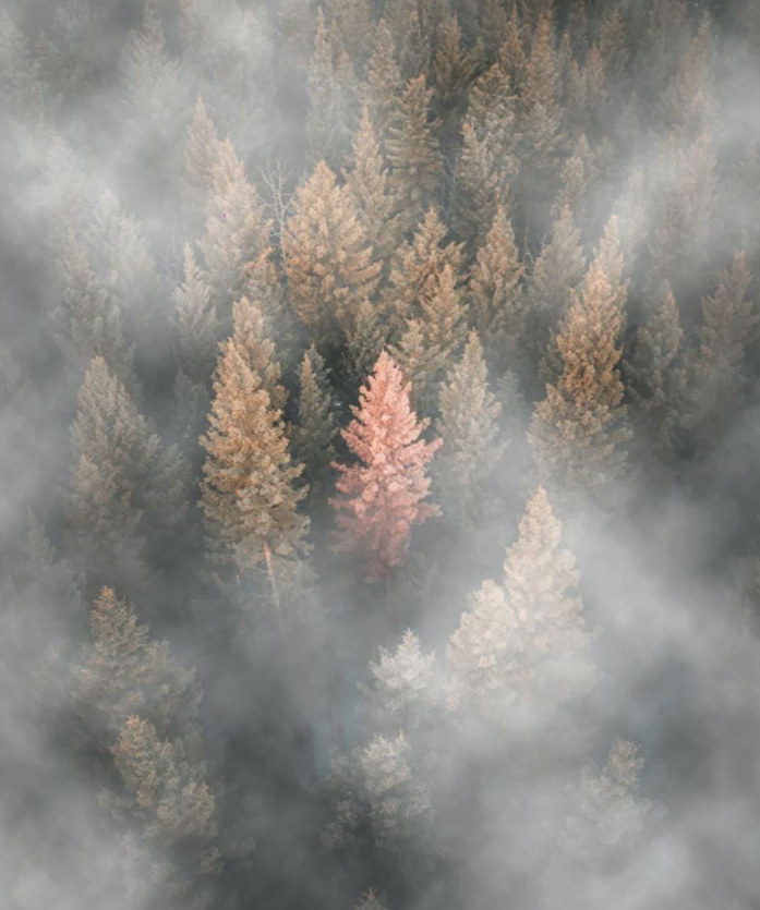 how to add fog to an image in photoshop