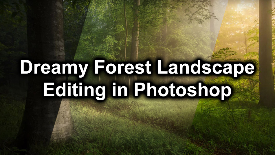 Dreamy Forest Landscape Editing in Photoshop
