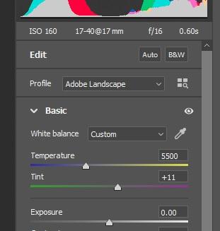 Prep files in Adobe Camera Raw