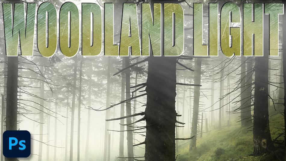 Woodland Light Rays in Photoshop