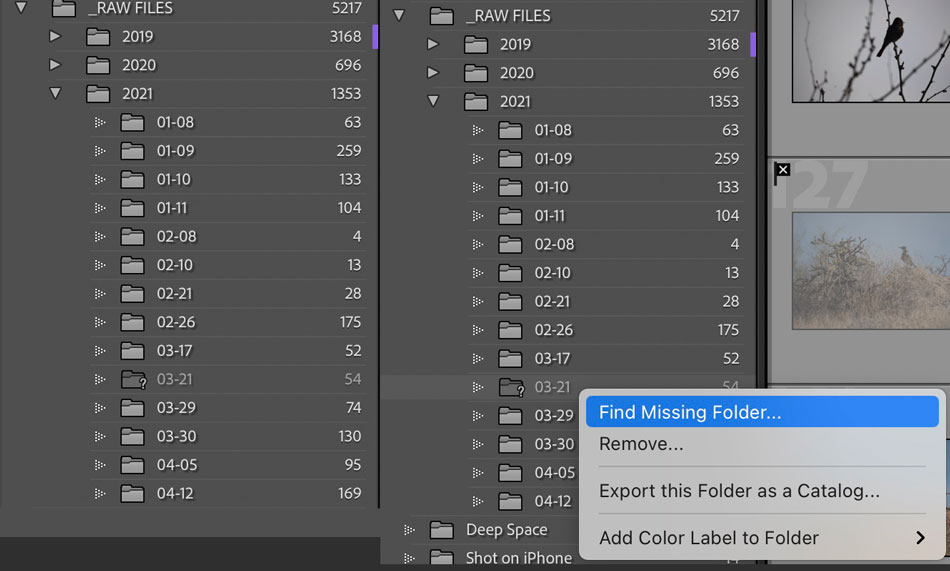 Advanced Lightroom Classic Catalog and File Practices