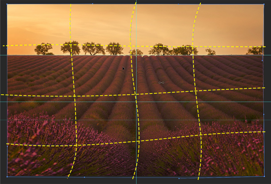 How To Use the Warp Tool to Balance Composition